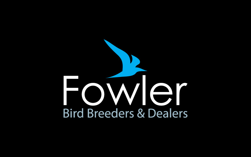 Bird Breeders & Dealers Logo Design