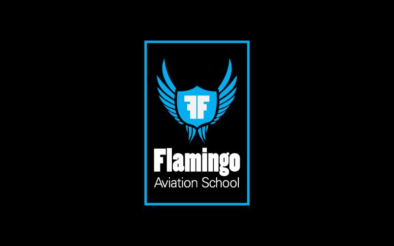 Flying Schools Logo Design