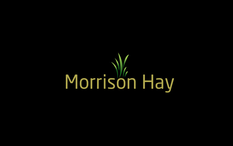 Hay & Straw Suppliers Logo Design
