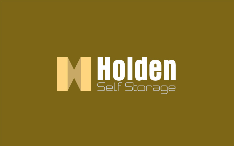 Self Storage Logo Design