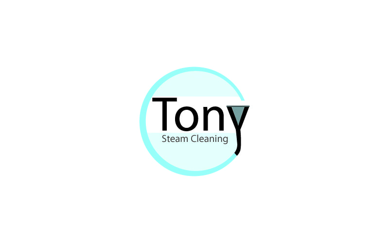 Steam Cleaning Logo Design