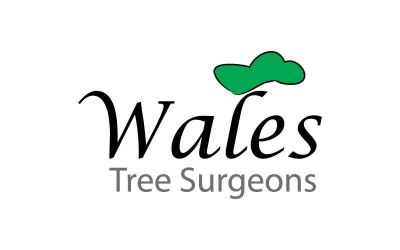 Treee Surgeons Logo Design