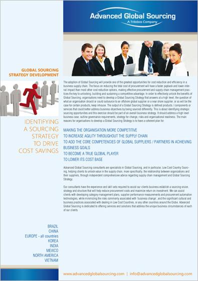Consultant Company Brochure Design
